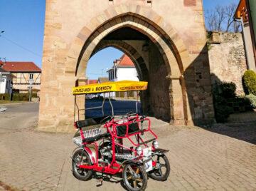 Les Rosalies du Piémont à Boersch - Location de Rosalies en Alsace